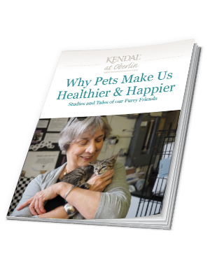 Pet companionship ebook